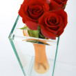 Three red roses in a vase — Stock Photo #2036211