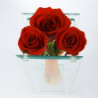 Stock Photo: Red bud of roses in vase