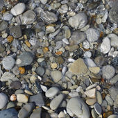 Pebbles and stone in the sea water — Stock Photo