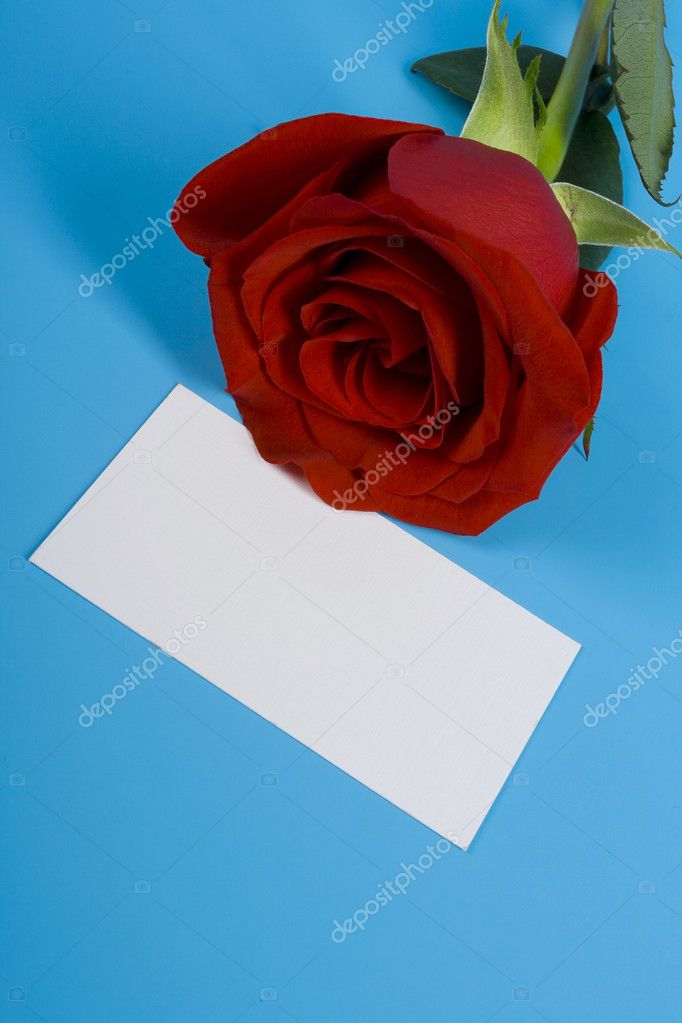 Red ros and card for note — Stock Photo #2036439