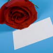 Note and rose — Stock Photo