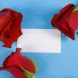 Stock Photo: Roses around the note