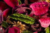 Flower's herbarium — Stock Photo