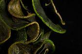 Leave's herbarium — Stock Photo