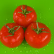 Three tomatoes on green — Stock Photo