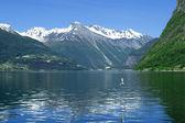 Fjord Norway — Stock Photo