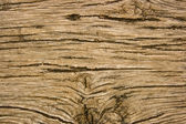 Old oak wood with deep relief cracks — Stock Photo