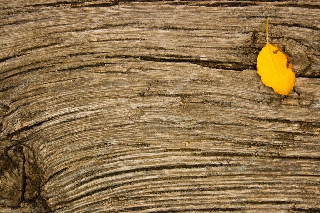 old oak wood wallpaper - photo #12
