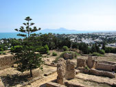 Ancient ruins of Carthage — Stock Photo