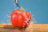 Concept of fresh vegetable, bell pepper — Stock Photo