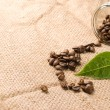 Coffee beans on brown burlap - Stockfoto