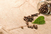 Coffee beans on brown burlap — Stock Photo