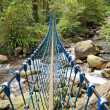 Stock Photo: Single rope bridge