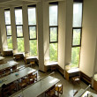 Stock Photo: Windows of University Library