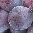 Grapes with drops, fresh fruit. - 
