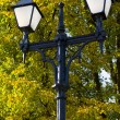 Park light — Stock Photo #1832579