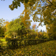 Autumn park — Stock Photo #1832639