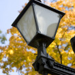 Park light — Stock Photo
