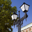 Park light — Stock Photo #1832942