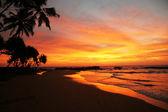 Sunset time — Stock Photo