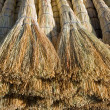Stock Photo: Besom