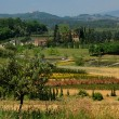 Tuscany, Italy — Stock Photo #1836811