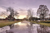 Palic gardens reflection — Stock Photo