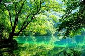 Blue lake. — Stock Photo