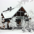 Stock Photo: Cottage in winter.