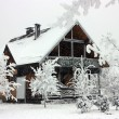 Cottage in winter. — Stock Photo