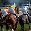 Royalty-Free Stock Photo: Horse race.