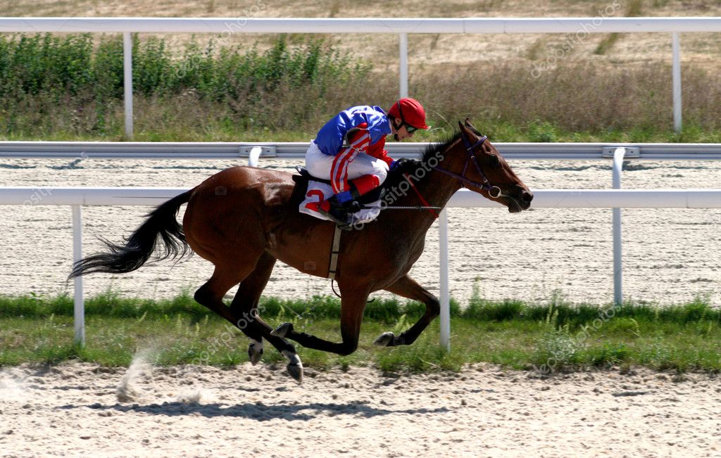 Horse race of the prize Pyatigorsk,Northern Caucasus,Russia. — Stock Photo #1937567