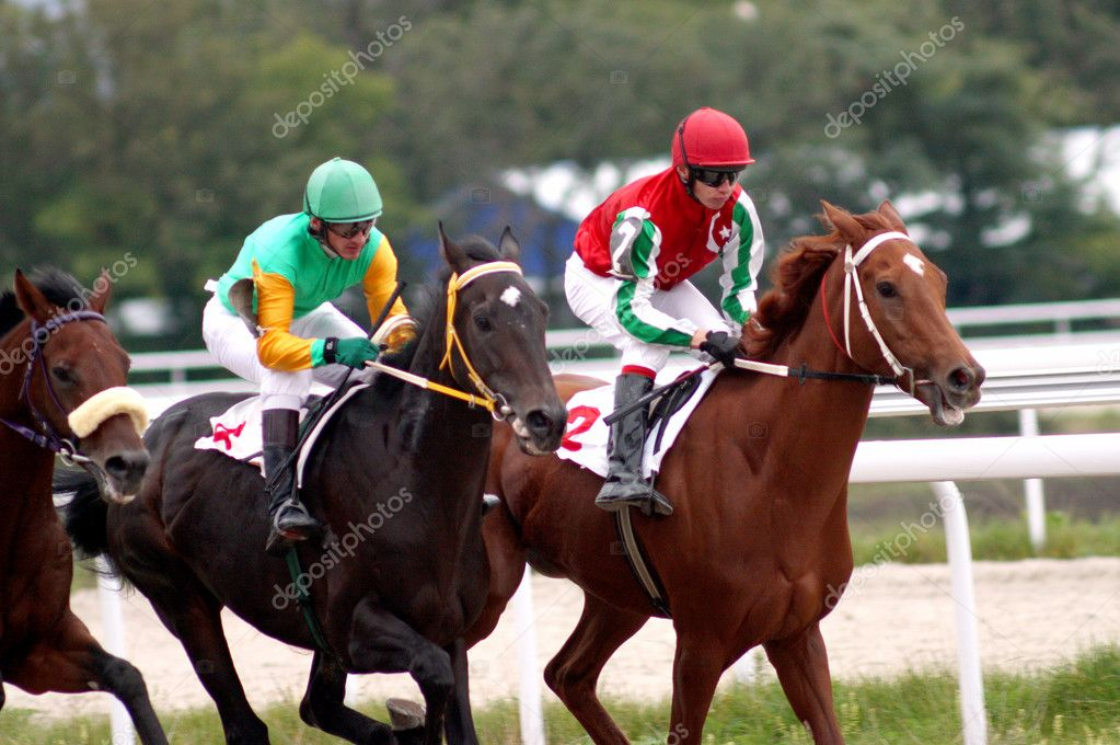 Horse race.Hippodrome in Pyatigorsk,Northern Caucasus,Russia.  Stock Photo #1944501