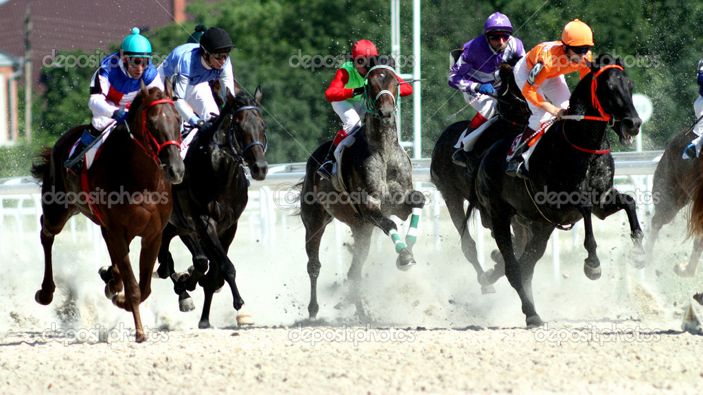 Horse race. Hippodrome in Pyatigorsk,Northern Caucasus,Russia. — Stock Photo #1946773