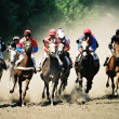 Sport.Horse race and Pyatigorsk hippodrome.Caucasus.Russia. — Stock Photo #1971781