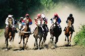 Sport.Horse race and  Pyatigorsk hippodrome.Caucasus.Russia. — Stock Photo
