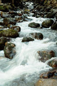 River in Dombai. — Stock Photo