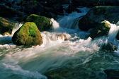 River in Dombai. — Stock Photo