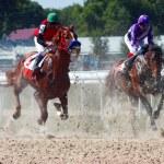 Horse race. — Stock Photo
