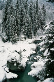 River. — Stock Photo