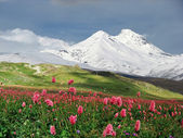 Mountains of the Caucasus — Stock Photo