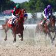 Horse race. — Stock Photo #2012568