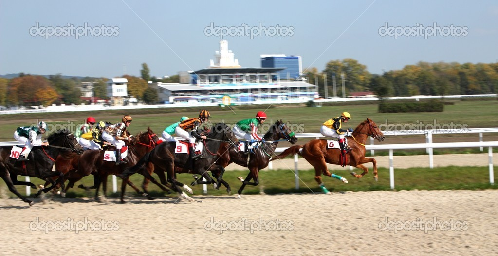 Horse race of the prize Pyatigorsk,Northern Caucasus,Russia.  Foto Stock #2049945