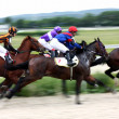 Horse race — Stock Photo #2050023