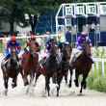 Horse race — Stock Photo