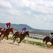 Horse race of the prize Dombai. - Stock Photo