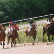 Horse race. — Stock Photo #2062073