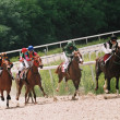 course de chevaux — Photo #2062073