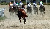 那匹马失去了骑师. — 图库照片