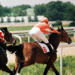 骑马比赛 — 图库照片